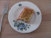 Rhubarb and ginger biscuit bar