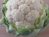 Cauliflower_2469